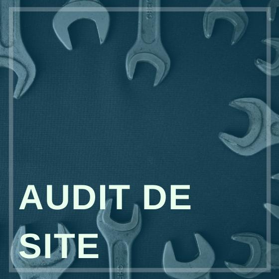 Audit de Site web-marketeur.com